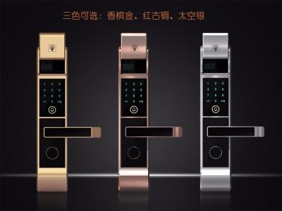 L6全自动智能指纹锁